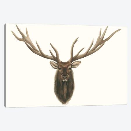 Elk Bust 3-Piece Canvas #POP425} by Grace Popp Canvas Print