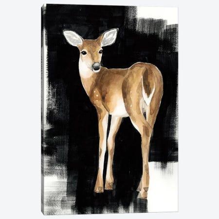 Nocturnal I Canvas Print #POP431} by Grace Popp Canvas Art Print