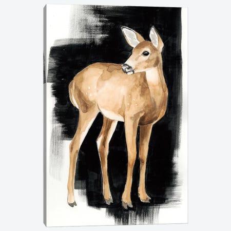 Nocturnal II Canvas Print #POP432} by Grace Popp Canvas Art Print