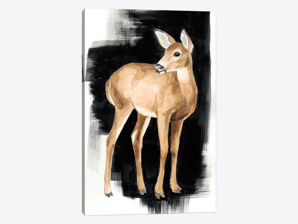 Nocturnal II by Grace Popp 1-piece Canvas Wall Art