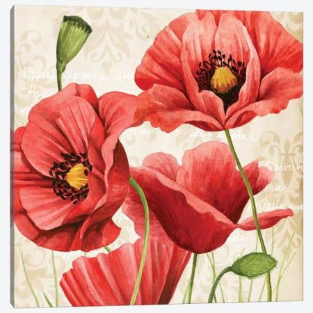 Poised Poppy I Canvas Print #POP433} by Grace Popp Canvas Print