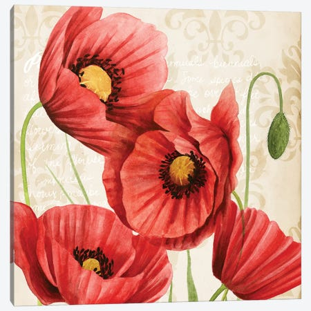 Poised Poppy II Canvas Print #POP434} by Grace Popp Canvas Art