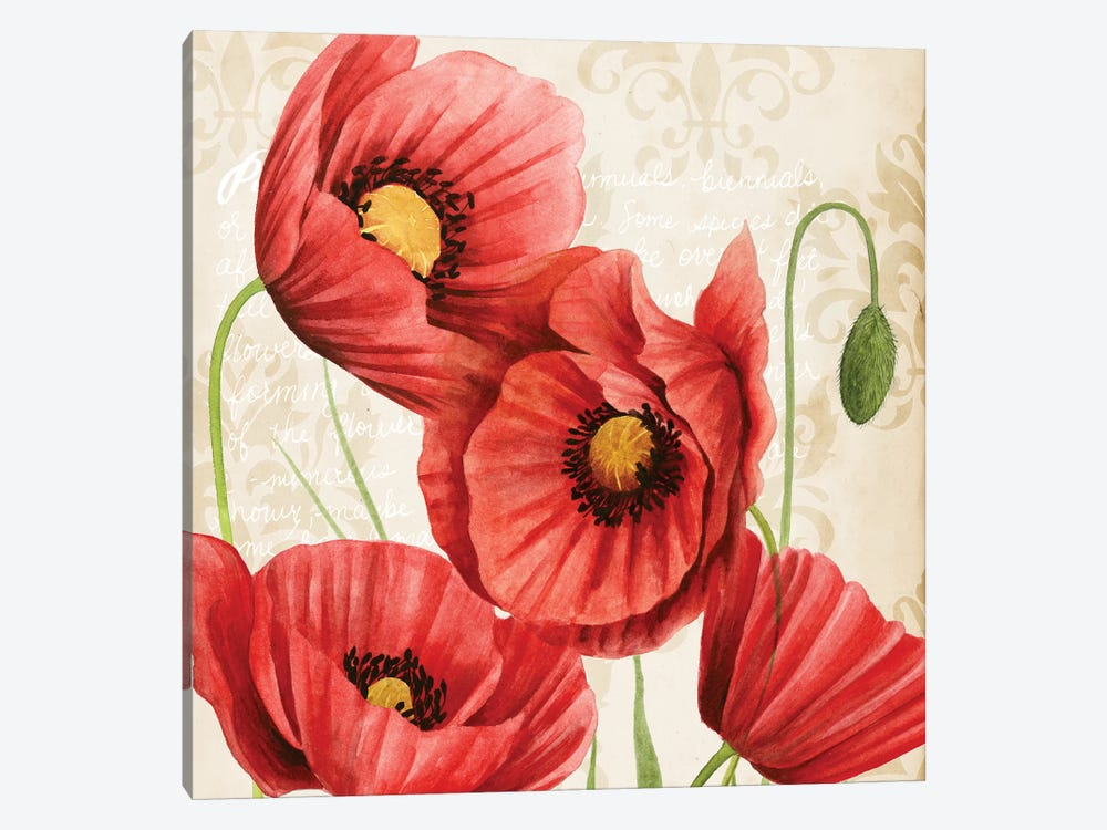 Poised Poppy II by Grace Popp 1-piece Canvas Wall Art