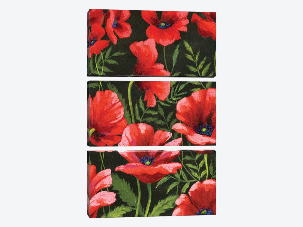 Poppies At Midnight II by Grace Popp 3-piece Canvas Wall Art
