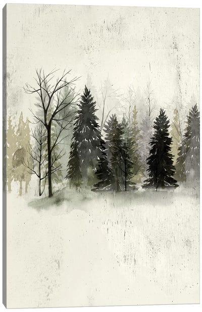 Textured Treeline II Canvas Art Print