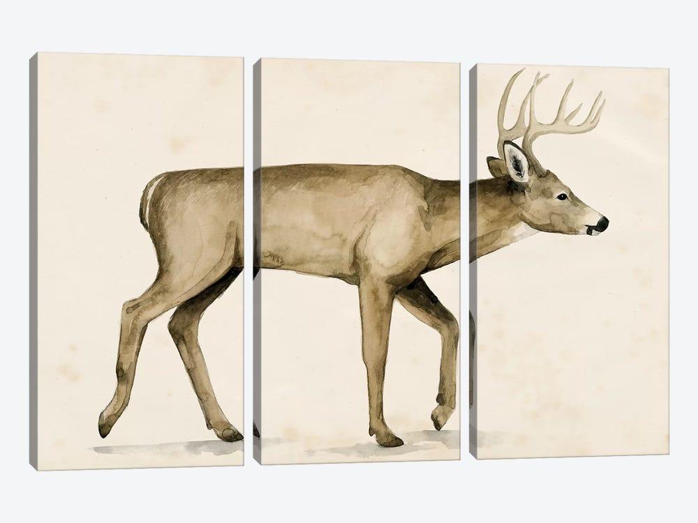 Wandering IV by Grace Popp 3-piece Canvas Art Print