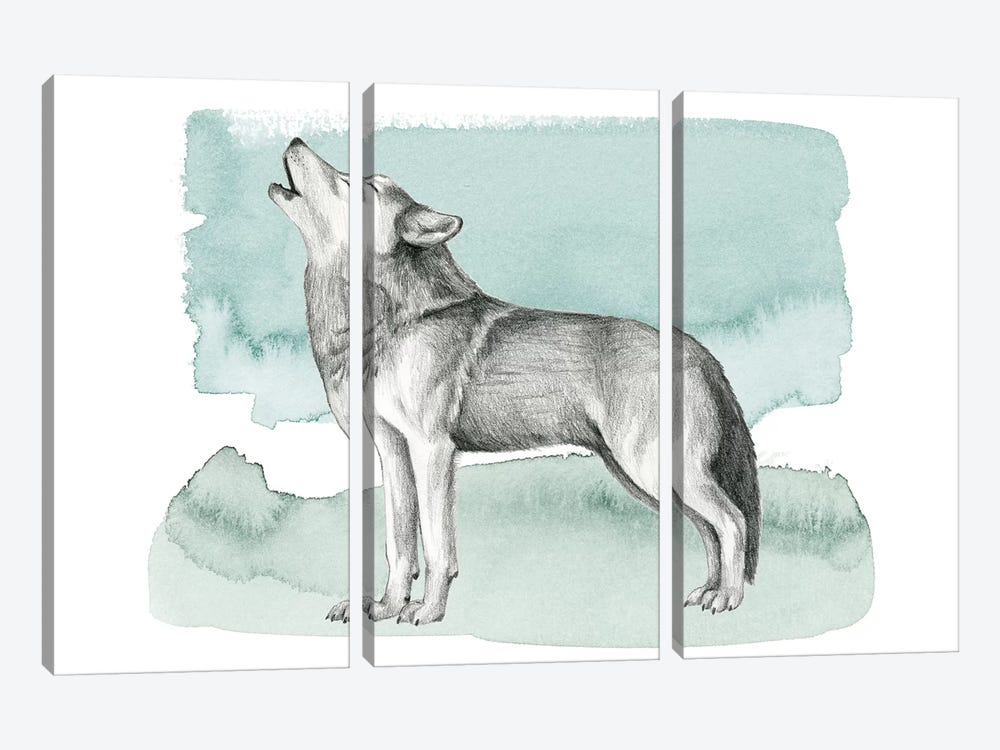 Animale I by Grace Popp 3-piece Canvas Wall Art