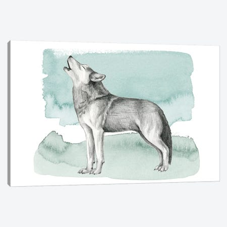 Animale I Canvas Print #POP449} by Grace Popp Canvas Artwork