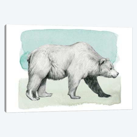 Animale II Canvas Print #POP450} by Grace Popp Art Print
