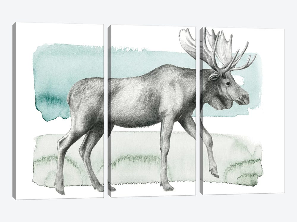 Animale III by Grace Popp 3-piece Art Print