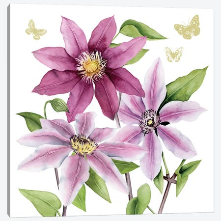 Clematis Climb I Canvas Print #POP486} by Grace Popp Canvas Art Print