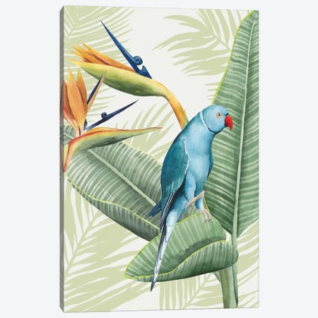 Avian Paradise III Canvas Print #POP4} by Grace Popp Canvas Art Print