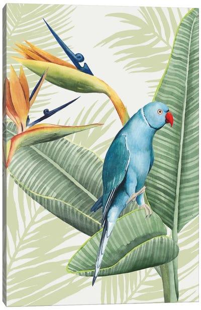 Avian Paradise III Canvas Art Print