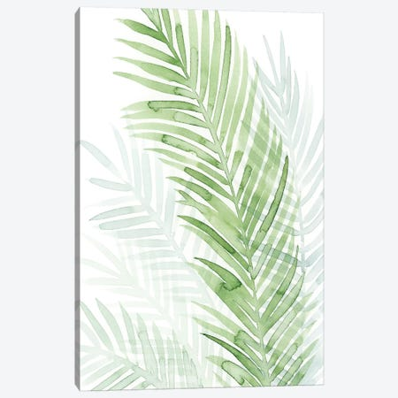 Faint Palms I Canvas Print #POP507} by Grace Popp Canvas Art