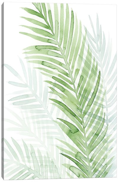 Faint Palms I Canvas Art Print