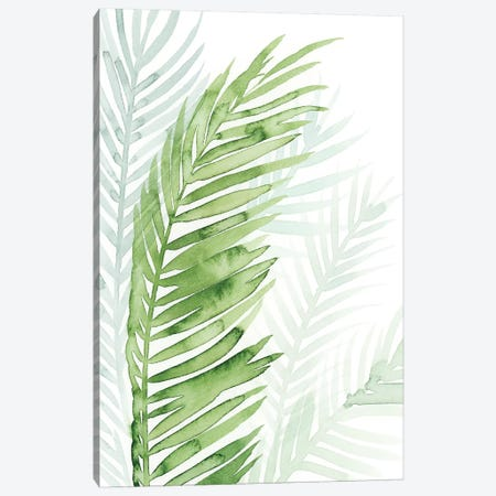Faint Palms II Canvas Print #POP508} by Grace Popp Art Print