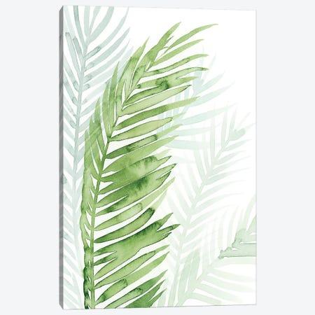 Faint Palms II Canvas Print #POP508} by Grace Popp Art Print