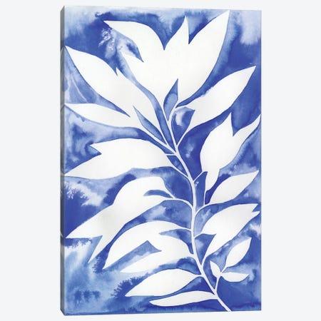 Ink Blot Vine I Canvas Print #POP524} by Grace Popp Canvas Art