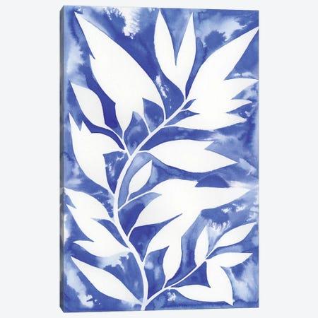 Ink Blot Vine II Canvas Print #POP525} by Grace Popp Canvas Artwork