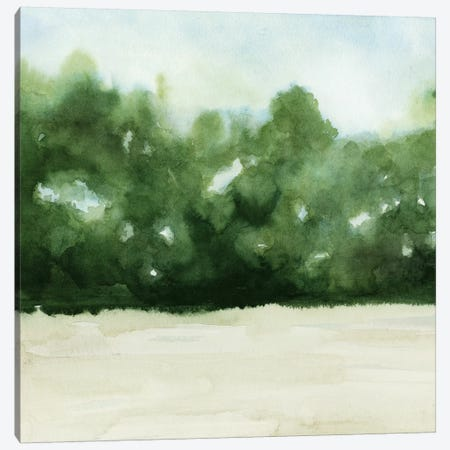 Loose Landscape I Canvas Print #POP528} by Grace Popp Art Print