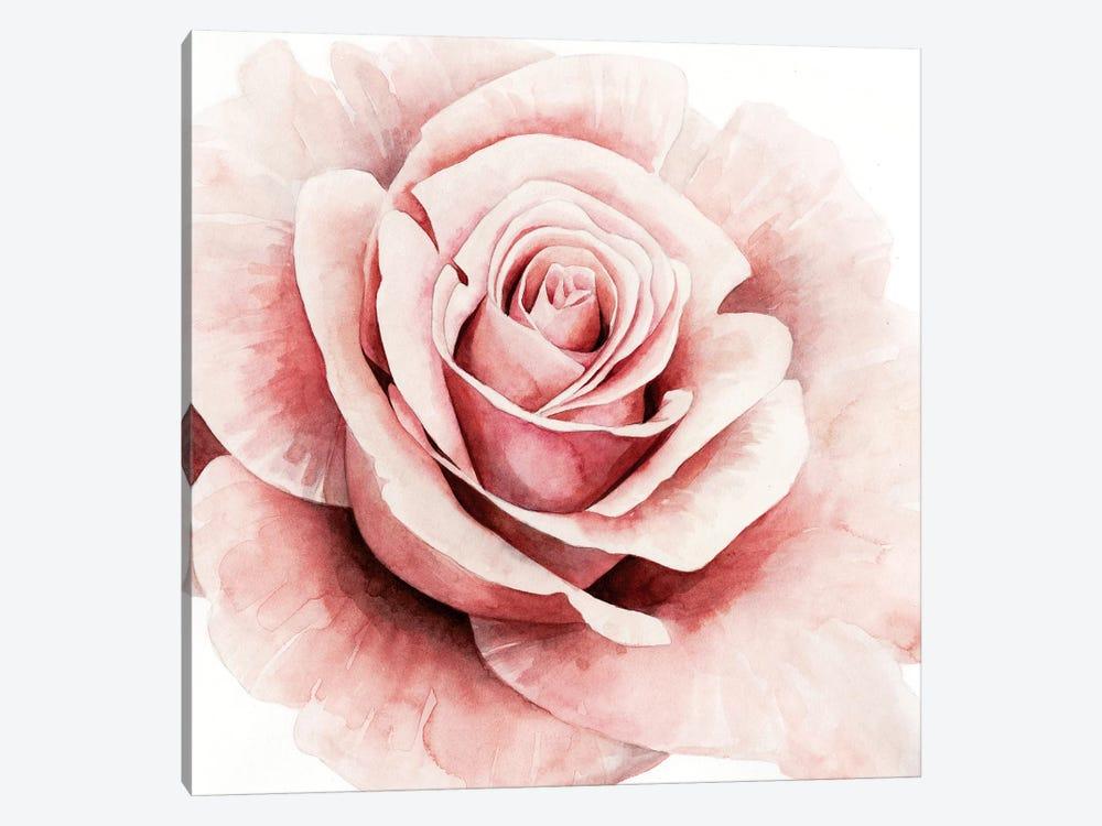 Pink Rose I by Grace Popp 1-piece Art Print
