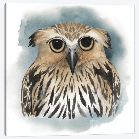 Greenwood Animals II Canvas Print #POP55} by Grace Popp Canvas Print