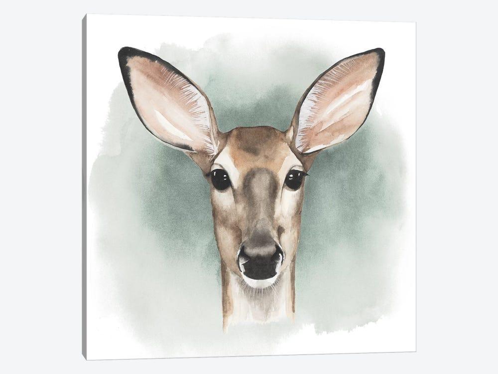Greenwood Animals III by Grace Popp 1-piece Canvas Art Print
