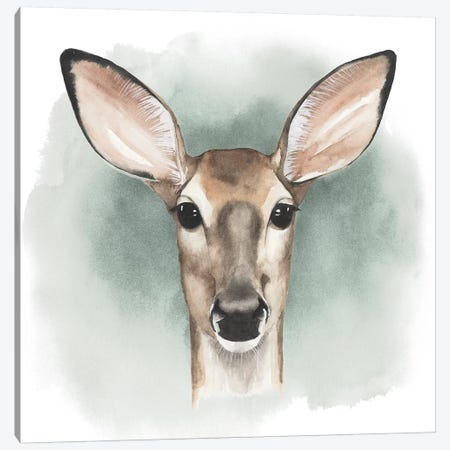 Greenwood Animals III Canvas Print #POP56} by Grace Popp Canvas Print