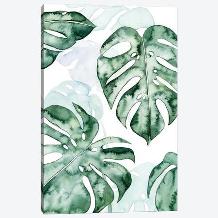 Split Leaf I Canvas Print #POP570} by Grace Popp Canvas Art