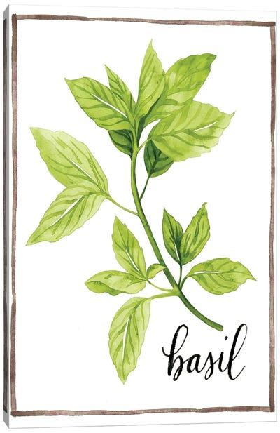Watercolor Herbs I Canvas Art Print