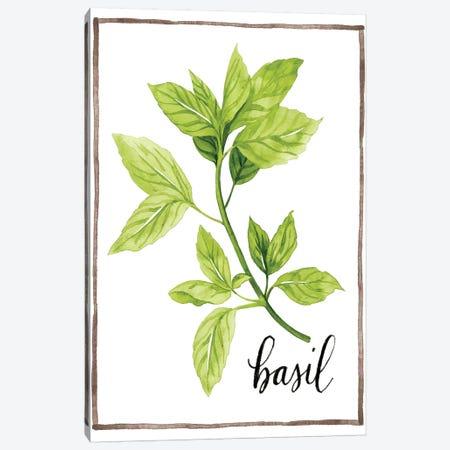 Watercolor Herbs I Canvas Print #POP594} by Grace Popp Canvas Art Print