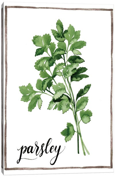 Watercolor Herbs II Canvas Art Print