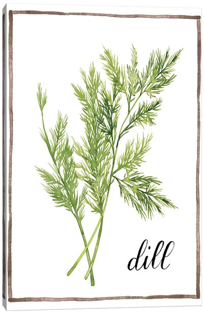 Watercolor Herbs III Canvas Art Print