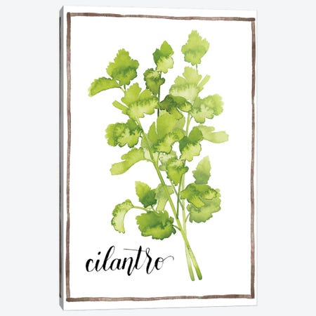 Watercolor Herbs IV Canvas Print #POP597} by Grace Popp Canvas Print