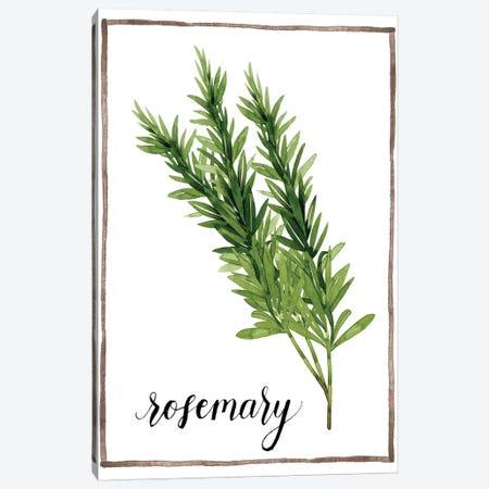 Watercolor Herbs V Canvas Print #POP598} by Grace Popp Canvas Art