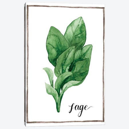 Watercolor Herbs VI Canvas Print #POP599} by Grace Popp Canvas Wall Art