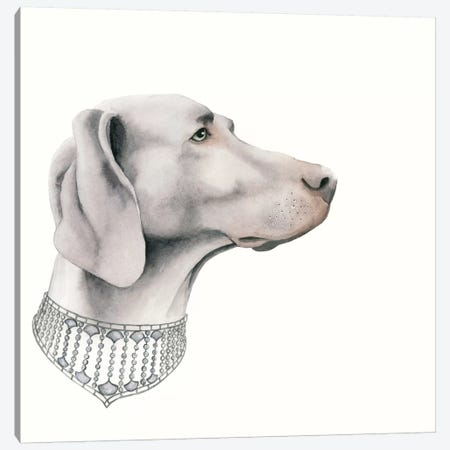 Haute Hounds II Canvas Print #POP59} by Grace Popp Canvas Artwork
