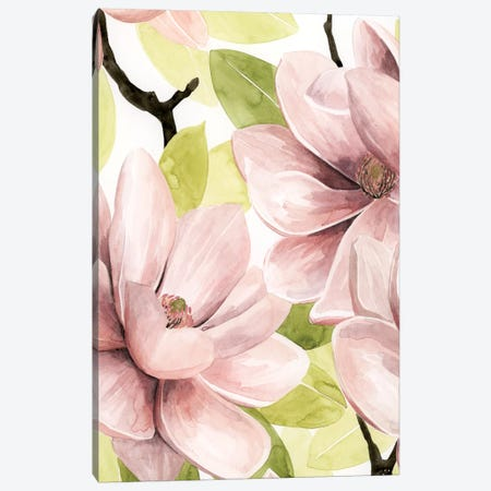 Blush Magnolia I Canvas Print #POP620} by Grace Popp Canvas Wall Art