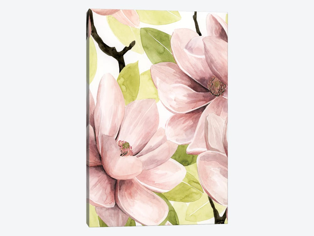Blush Magnolia I by Grace Popp 1-piece Canvas Art