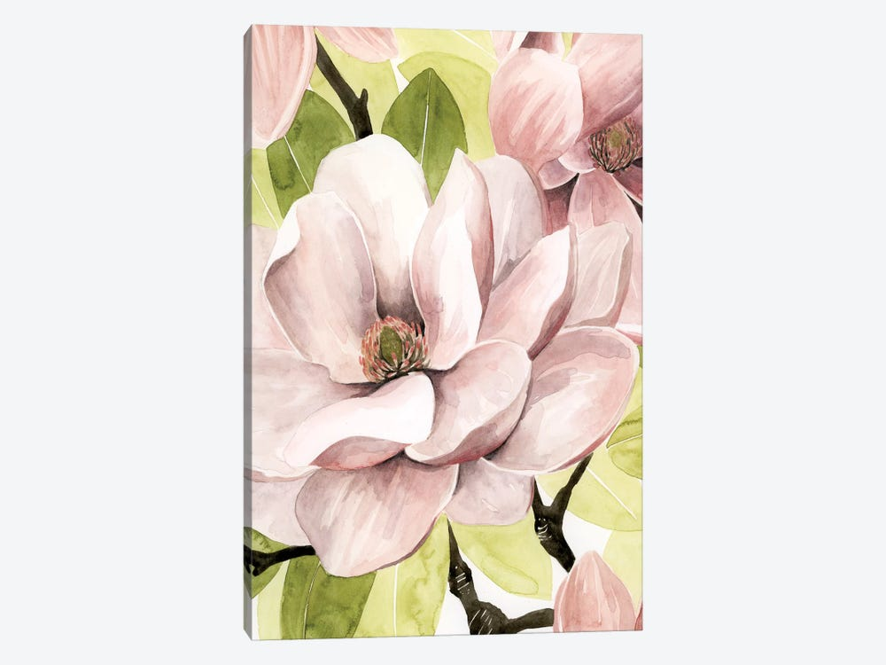 Blush Magnolia II by Grace Popp 1-piece Canvas Print