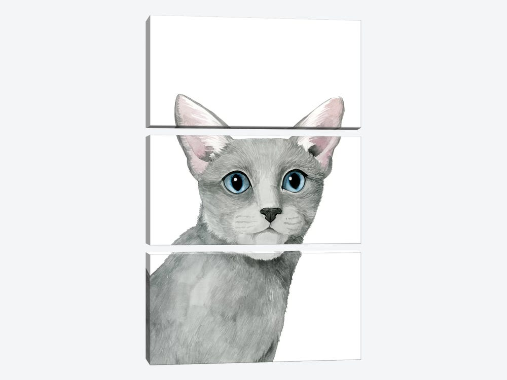 Cat Portrait I by Grace Popp 3-piece Canvas Wall Art