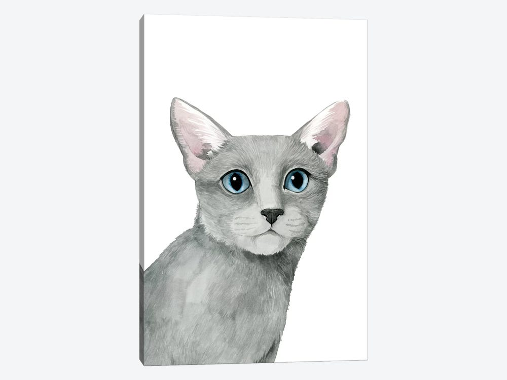 Cat Portrait I by Grace Popp 1-piece Canvas Wall Art