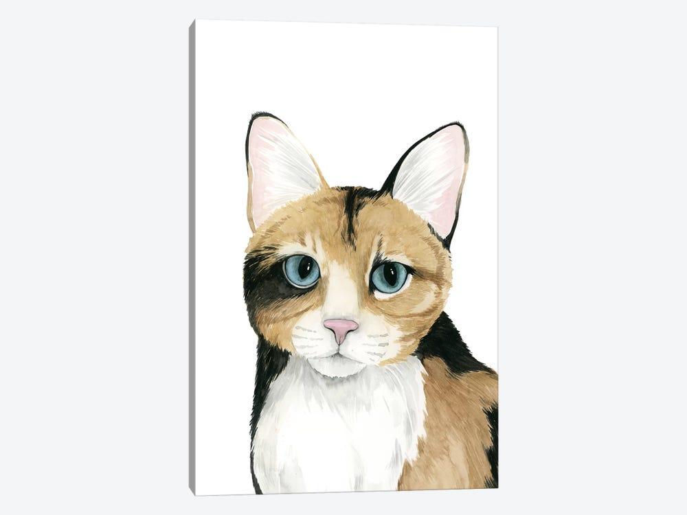 Cat Portrait II by Grace Popp 1-piece Canvas Print
