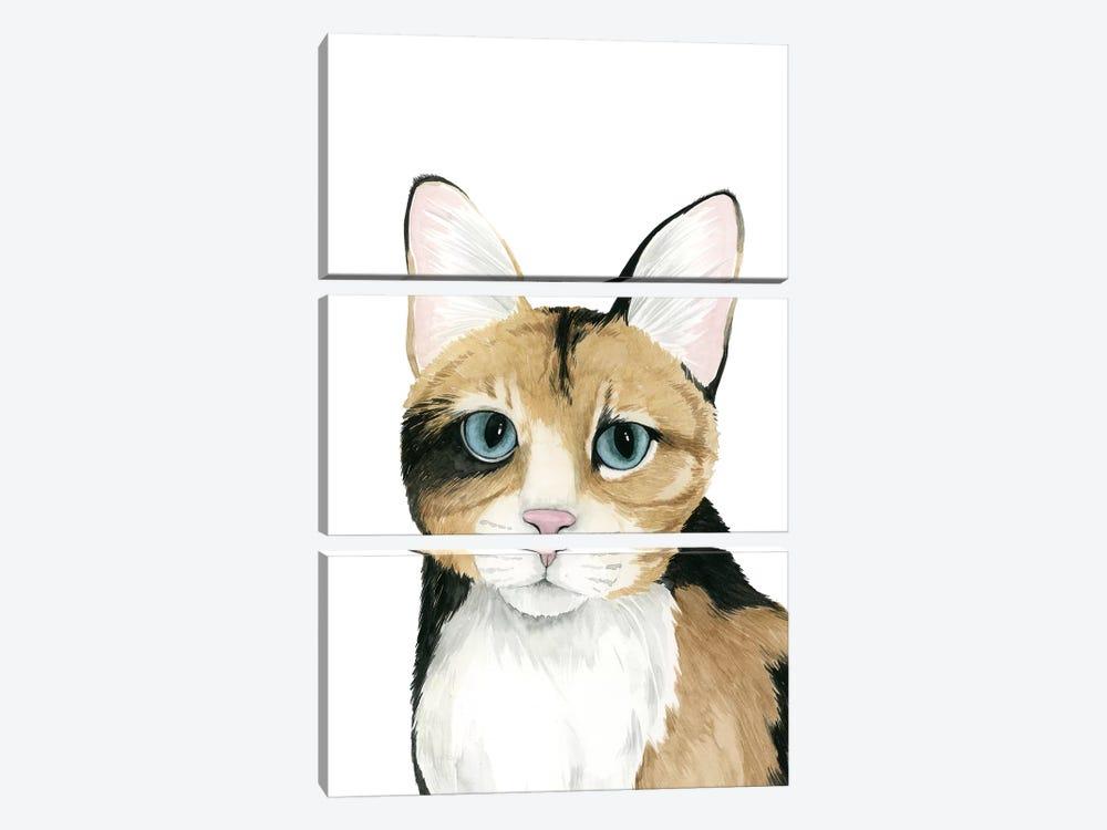 Cat Portrait II by Grace Popp 3-piece Art Print