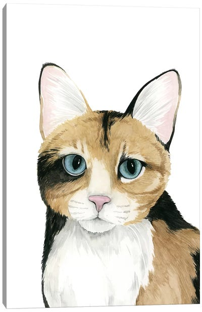 Cat Portrait II Canvas Art Print