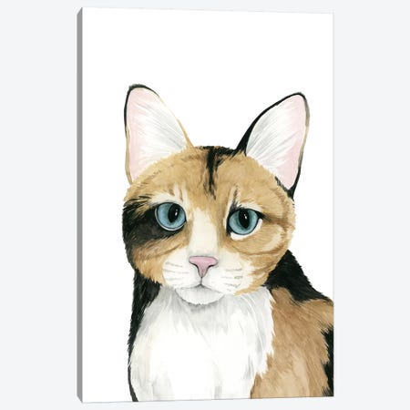 Cat Portrait II Canvas Print #POP623} by Grace Popp Canvas Art