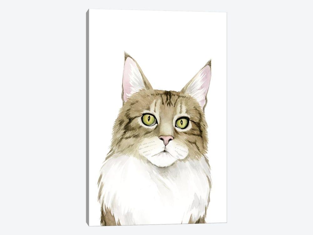 Cat Portrait IV by Grace Popp 1-piece Art Print