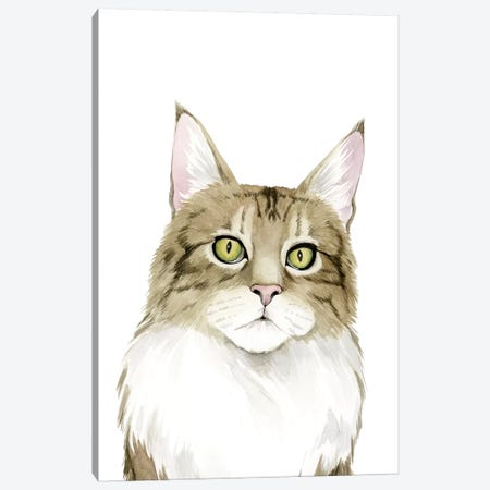 Cat Portrait IV Canvas Print #POP625} by Grace Popp Canvas Art Print