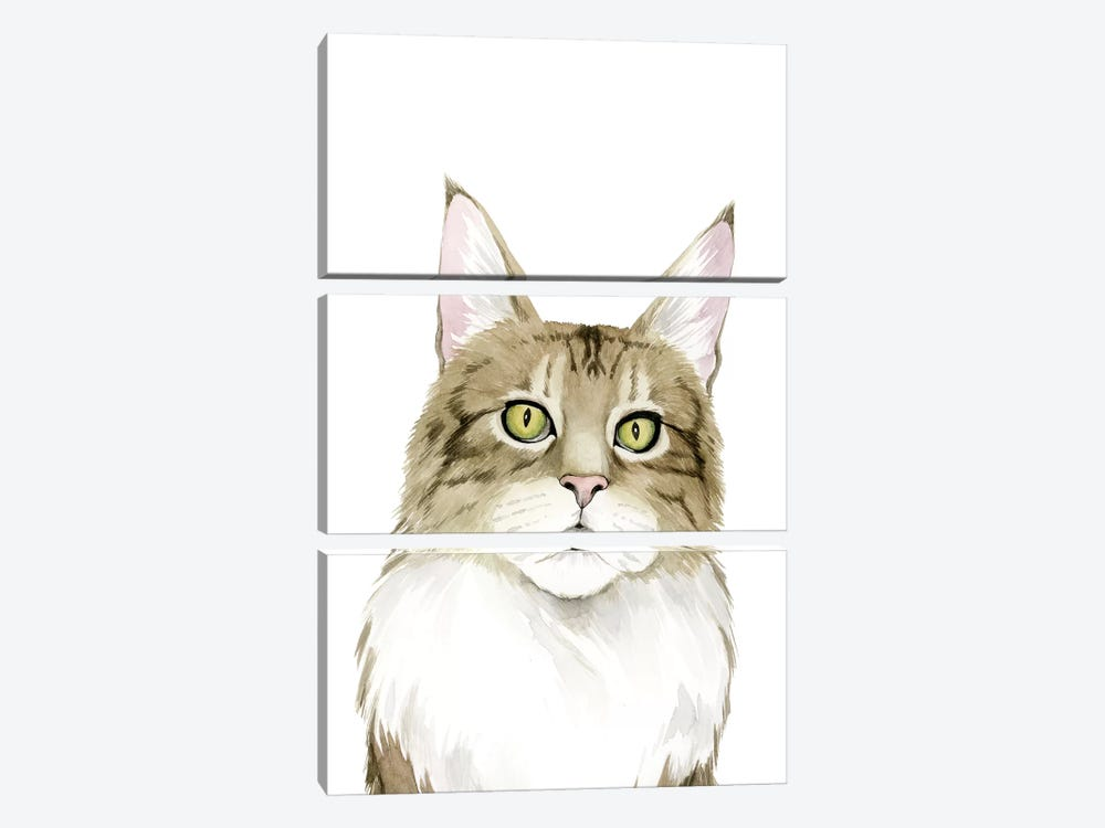 Cat Portrait IV by Grace Popp 3-piece Canvas Art Print