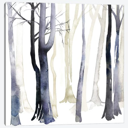 In The Forest I Canvas Print #POP62} by Grace Popp Canvas Print